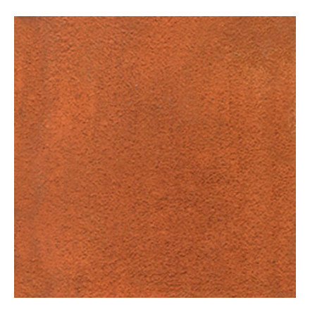 Rapid Rust