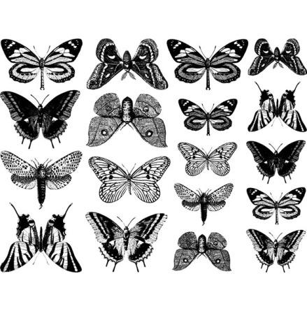 Fjärilar - Guld