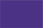 Stylin - Purple