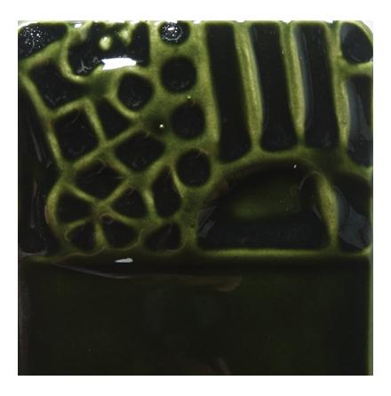 Evergreen Fir