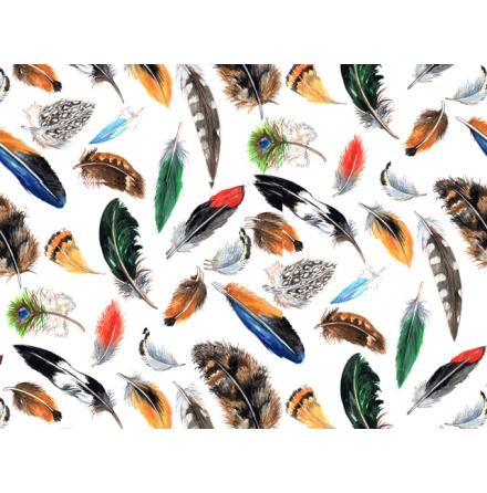 Fjädrar 70x50cm