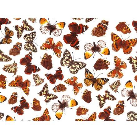 Fjärilar I 70x50cm