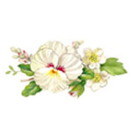 Vit blomsterprakt - 40 mm - 5 st.