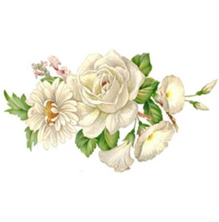 Vit blomsterprakt - 70 x 40 mm - 5 st.