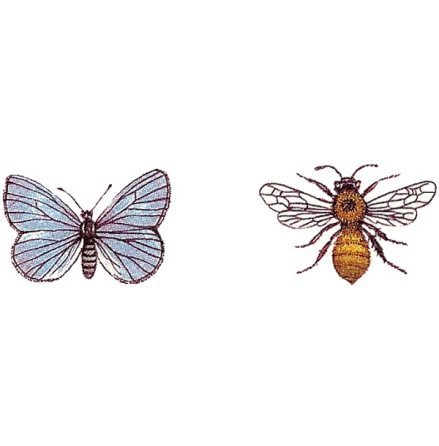 Fjäril & bi - 30 x 20 mm - 5 par