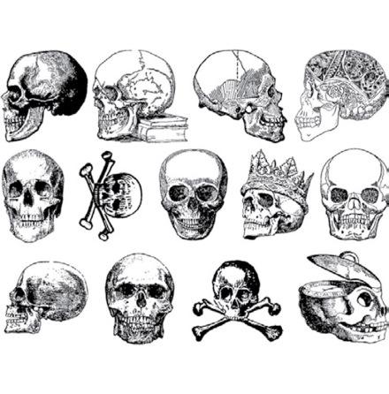 Dödskallar - Koppar