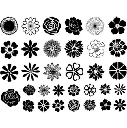 Blommor små - Platina