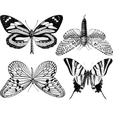 Fjärilar stora - Guld