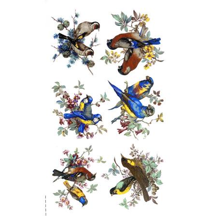 Fåglar 65 mm - set med 6 olika